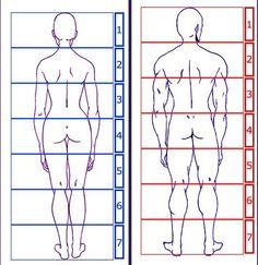 Dessiner ou peindre le corps humain – Les proportions - Partie n° 2 / 4