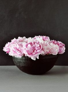 Peonies. Easy to grow, hard to harm. gorgeousness