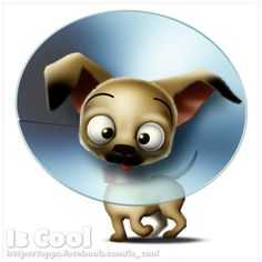 Young dog by Is Cool Art, via Flickr