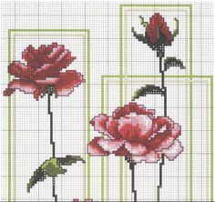 Rosa parte 1