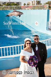 The bride and groom stopped by the Clearwater Aquarium to have a photo opp with the dolphins! - Captured Images Blog