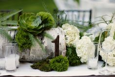 Birch, succulents, hydrangeas and ferns, gorgeous woodsy centerpiece designed by Florabella Studios shot by Kate Harrison