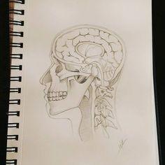 Head's cut #design4ndmore  #loireatlantique #saintnazaire  #sketchbook #sketch #drawing #draw #instaday #instadraw #pencil #anatomy #skull #medecine #cut #brain #head #spinal #science #scienceisart #art #artpiece B Rain, Sketch Drawing, Anatomy, Art Pieces, Pencil, Skull, Science, Photo And Video, Drawings