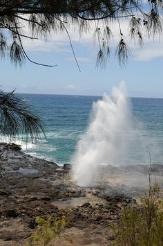 Lava tube shooting water through the blow hole. Hawaii Life, Kauai Hawaii, Oahu, Places Ive Been, Places To Go, Water Spout, Hawaiian Islands, Girl Scouts, Vacation Ideas