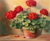PAINTINGS OF PINK GERANIUMS - Yahoo Image Search Results