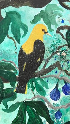 Tropical Bird iPhone Wallpaper