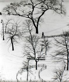 Andre Kertész. Washington Square, 1954    Kertész observed life in the neighbourhood where he lived, from the window of his apartment on Washington Square, just as he had done in Paris.