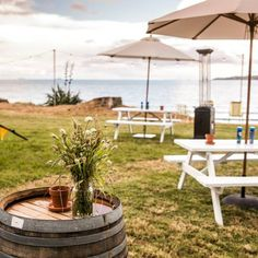 Where precious summer memories are made! One of our all time favourite events we styled with @onelovelydaystyling on beautiful Motuihe Island #summerlife #wildernestnz #glamping | Wildernest Instagram