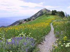 Hiking Ben Lomond Peak.    Location Ogden,Utah