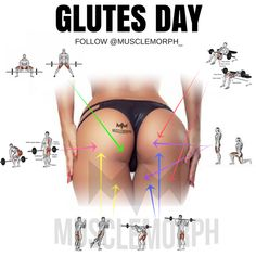 glute day glutes glutes exercises glute exercise booty workout glutes workout glute workout booty workout butt  musclemorph musclemorph supps gym https://musclemorphsupps.com/