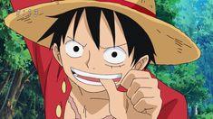One Piece Luffy, One Piece Anime, Ace Sabo Luffy, Monkey D Luffy, All Anime, Disney Cartoons, Zoro, Funny Faces, Anime Characters