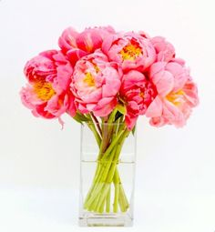 Coral Peonies Hand Tied in High End Bouquet for NYC delivery .