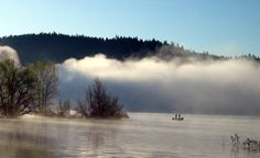 Morning Mist on Scott's Flat Lake, CA  Christine B. © 2006