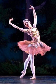 Hee Seo - Ballet, балет, Ballerina, Балерина, Dancer, Danse, Танцуйте, Dancing