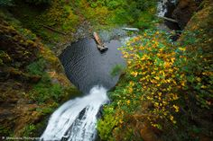 Falling deep, the waters of the multnomah  make its way through the gorge with the fall foliage all around.