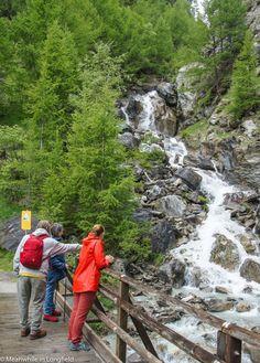 Botanischer Lehrpfad -trekki, Zermatt Sveitsi