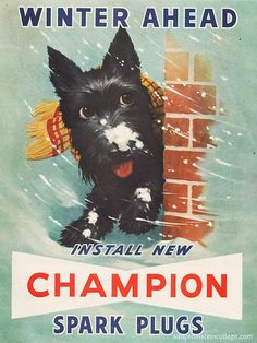 Scottie Dog in Champion Spark Plug Ad - Vintage Posters Vintage, Images Vintage, Photo Vintage, Vintage Dog, Vintage Pictures, Vintage Signs, Vintage Stuff, Vintage Cars, Old Advertisements