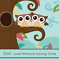 Owl - Look Whooo's Having Twins - Personalized Baby Shower Invitations | BigDotOfHappiness.com