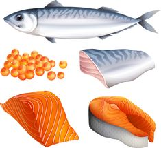 Buy Salmon by BlueRingMedia on GraphicRiver. Salmon in different cuts and salmon eggs Salmon Eggs, Lion Painting, Fabric Painting, Salmon Drawing, Pics Art, Fathers Day Crafts, Food Drawing, Food Crafts, Healthy Eating