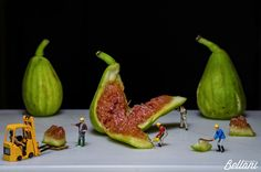 Opening the fig