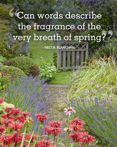 """""""Can words describe the fragrance of the very breath of spring?"""""""