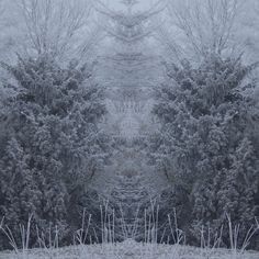 https://flic.kr/p/R9bQ1a | Amazing winter! | An Amazing winter in Holland!