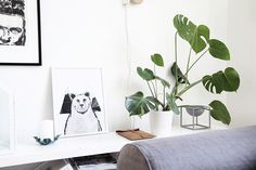 Inspiring Homes: My Second Hand Life | Nordic Days