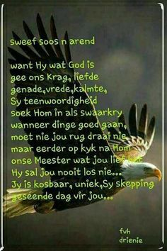 Sweef soos n Arend Good Morning Wishes, Good Morning Quotes, Bible Emergency Numbers, Anchor Quotes, Afrikaanse Quotes, Goeie More, Special Quotes, Prayers, Spirituality