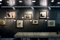 Track Lighting, Gallery Wall, Ceiling Lights, Flooring, Frame, Retail, Google Search, Home Decor, Picture Frame