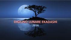Essere il Cambiamento - Calendario lunare 2016