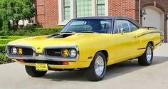 Passport Transport Auto Shipping This is how we Became the best. #LGMSports relocate it with http://LGMSports.com SuperBee
