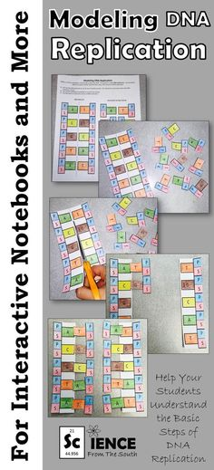 Excellent activity to help your students understand DNA replication. Cut the pieces and add them to the pocket for an interactive notebook entry. Or you can use the activity for a quick practice assignment over DNA replication. Ready to assess? Use the ac