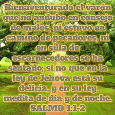 La persona que desde pequeño obedece a Dios, tendrá una vida plena.