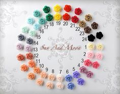 Resin Cabochons 5 Pairs 5 Colours Autumn Retro Flowers