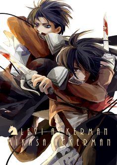 Mikasa Ackerman and Rivaille - Shingeki no Kyojin