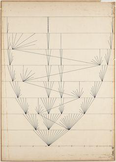 Graph fruit length Oenothera lamarkiana by Hugo de Vries, 1891 -- Grafiek vruchtlengte van Oenothera Lamarckiana in 1891.