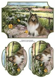 Gallery - With this design after printing it out onto photo paper, and cutting out the toppers, i used the main design. Chiwawa, 3d Pattern, Rough Collie, Crafts To Make And Sell, Decoupage Paper, Card Sizes, Pet Dogs, Card Making, 3d Sheets