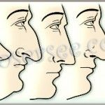 How can you contour your nose using makeup? See these tips for the most common nasal shapes.