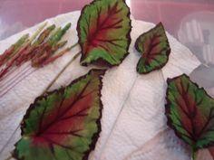 Begonia Leaf. No instrucciones, pero la idea es esa.