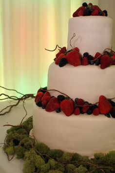 Made this for brother's wedding    Berry Wedding Cake 3-tier
