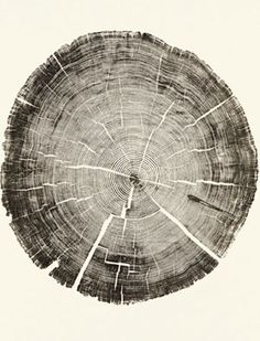wood stump prints | from the book Woodcut by artist Bryan Nash Gill Tree Rings, Printmaking, Croquis, Sculpture, Art Photography, Artsy, Tattoos, Creative, Illustration Art