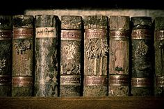 xylothek: wooden library. A book made of wood and bark from a specific tree species and contains details from the tree inside, such as mosses and leaves. Carefully crafted in Germany around the 19th century, several xylotheks in a collection would be a forest of a library.