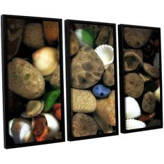 ArtWall Kevin Calkins Petoskey Stone Collage Iii 3-Piece Floater Framed Canvas Set, Size: 36 x 54, Brown