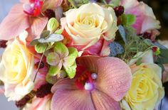 Rose, Flowers, Plants, Pictures, Pink, Plant, Roses, Royal Icing Flowers, Flower