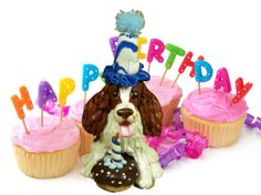 Liver and White English Springer Spaniel BIRTHDAY dog OOAK Clay Cake Topper art by Sallys Bits of Clay Original Sculpture