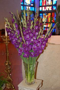 Purple Glads.  Love them.  Every year  I mix two shades of the same color for a beautiful display for my coffee table.