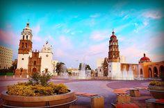 Irapuato, Guanajuato; México.