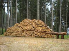 Val di Fiemme, arte in una catasta di legna. Foto di Lilly Del Bo