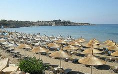 The beach at Peyia, on Cyprus's west coast, is known as Coral Bay and is ideal for families in search of safe swimming and soft sand. Best Dating Sites, Online Dating, International Dating, Paphos, Ancient Artifacts, Aphrodite, Cyprus, Continents, Greece