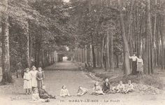Forêt de Marly-le-Roi